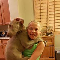 #weimaraner #kidsanddogs #phoenixdogtrainer #dogtrainingphoenix